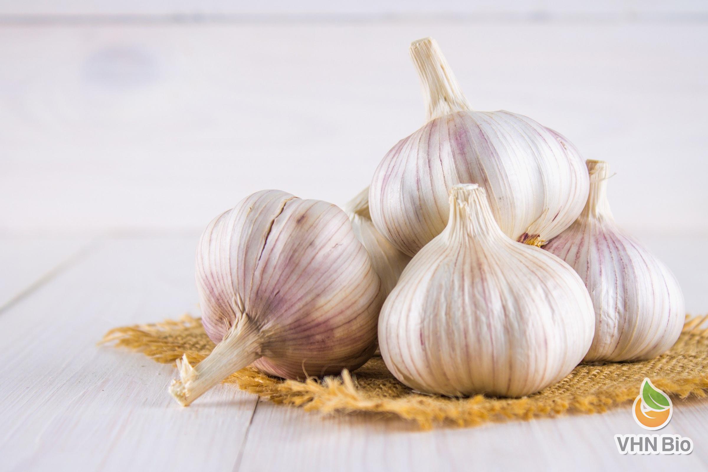 Danh sách những thức ăn tăng cường hệ miễn dịch